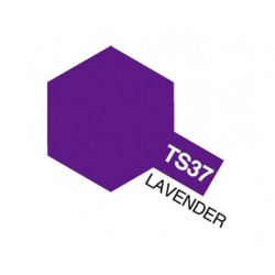 TS-37